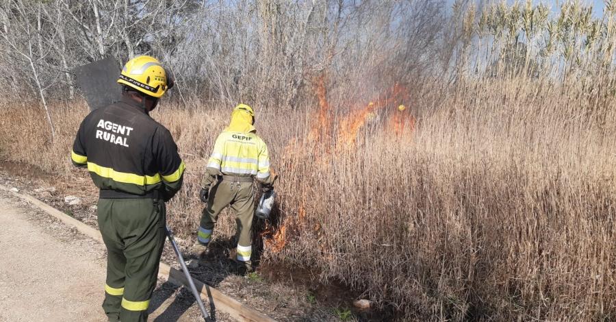 Comencen les cremes controlades al Parc Natural del Delta de l'Ebre