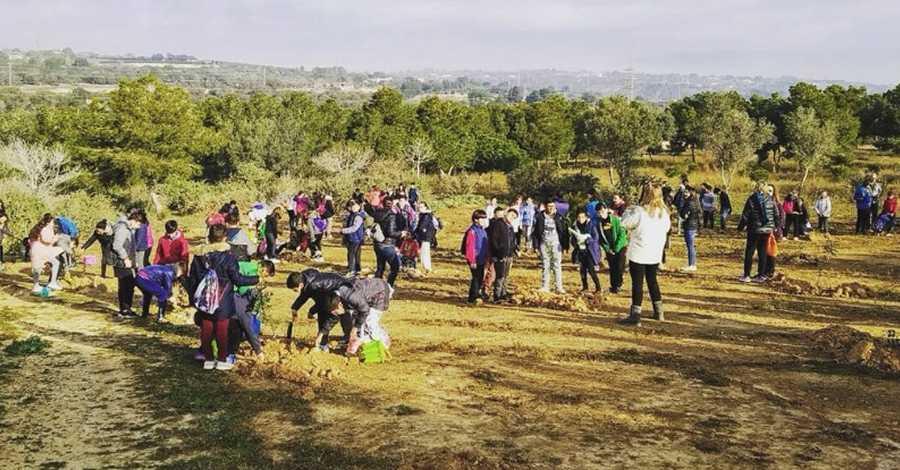 Els escolars d'Amposta celebren la Festa de l'Arbre