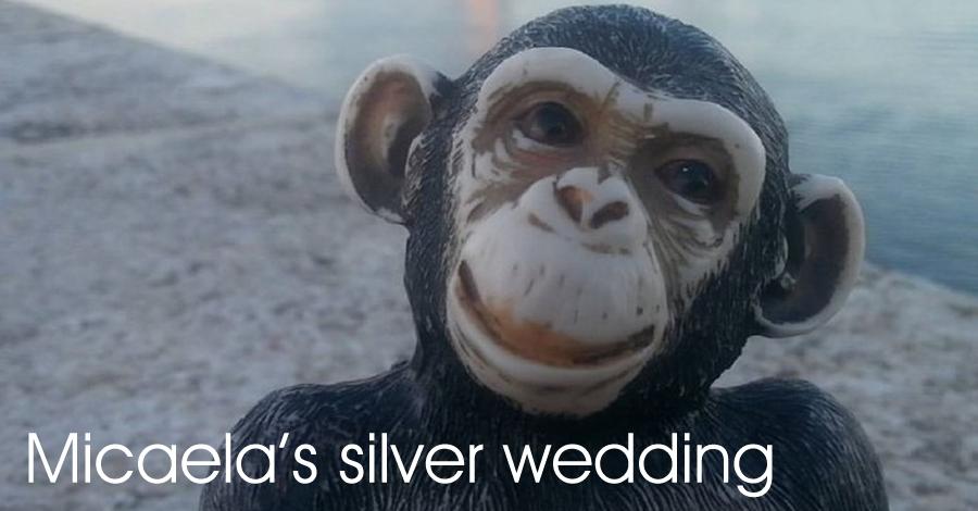 Micaela's silver wedding: bodes de plata de la Mona Micaela i el Mono de l'Anís