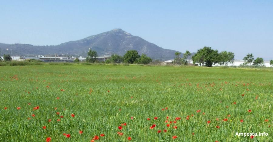 L'Escola Agrària d'Amposta organitza un curs de Permacultura