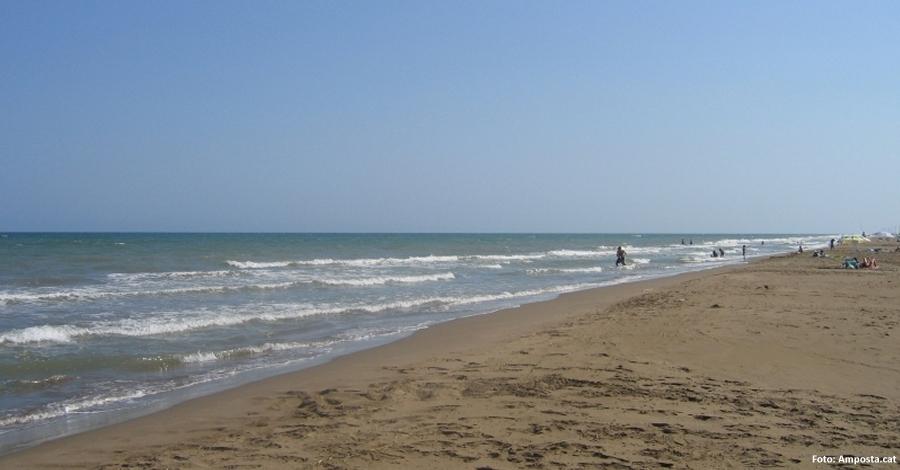 La platja Eucaliptus d'Amposta guardonada amb el distintiu «Platges verges» | Amposta.info