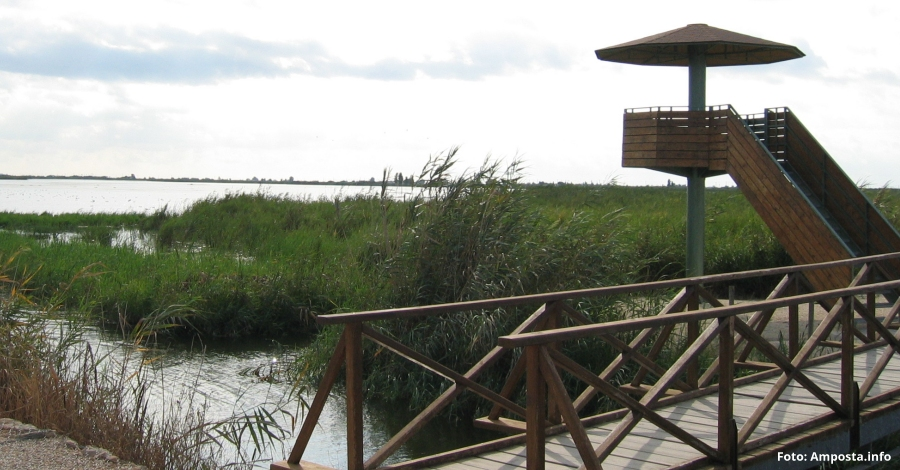 L'Ajuntament d'Amposta presenta el pla d'actuacions per al foment territorial del turisme al terme