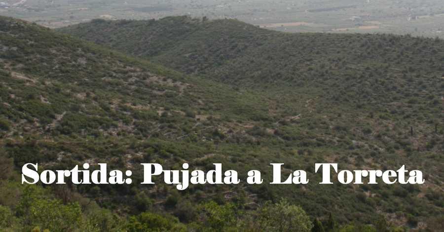 Sortida: pujada a la Torreta i pícnic